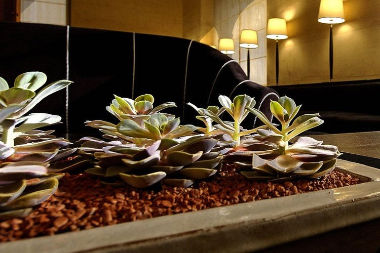 Aree comuni  art hotel novecento bologna
